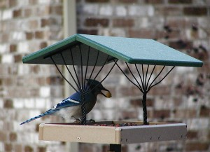 Recycled Fly-Thru Bird Feeder