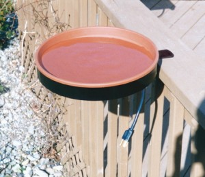 heated bird baths