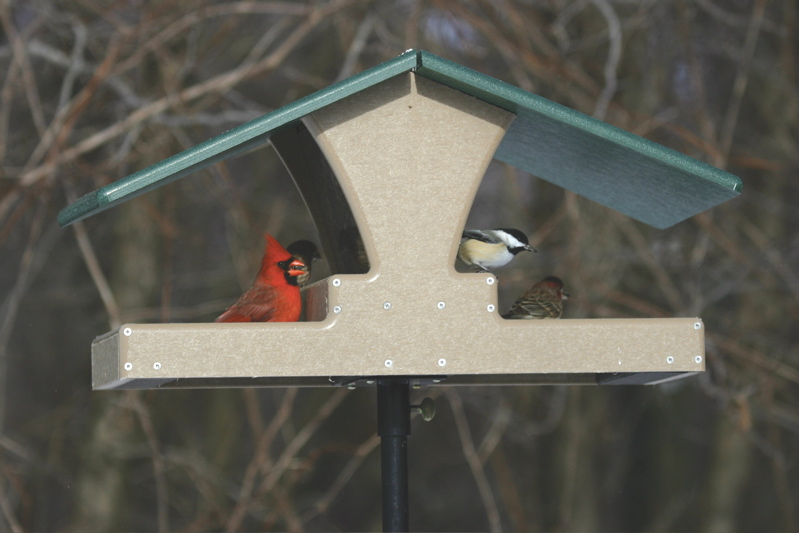 Double Decker Hopper Bird Feeder