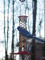 Tube Birdfeeders