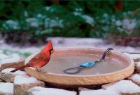 ceramic bird baths