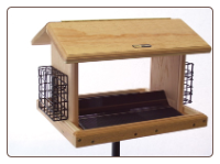 Eleven quart hopper bird feeder