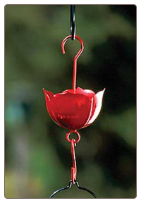 Use an Ant Moat with Your Hummingbird Feeder