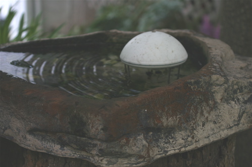 A water wiggler sits in a planter turned birdbath