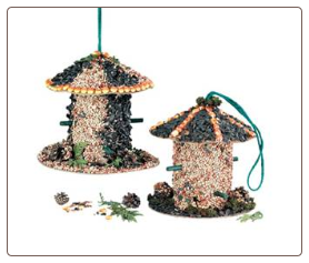 edible bird feeder kit