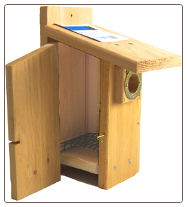 western bluebird house with added features