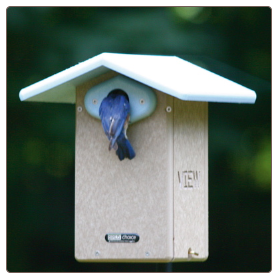 clean bluebird houses for winter roosting