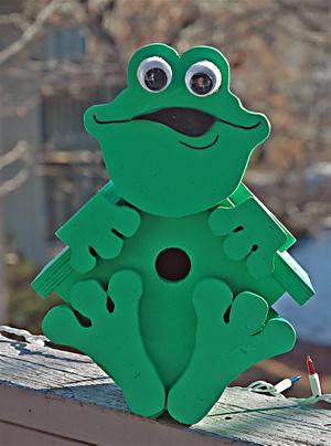 Fun Frog Birdhouse kit