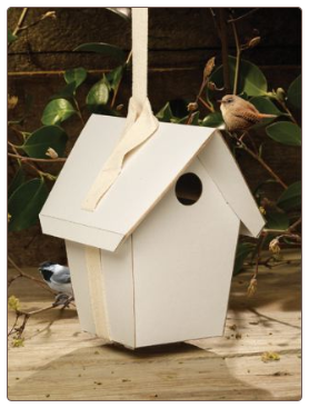 The Totally Green Birdhouse Kit