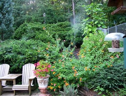 A leaf Mister sprays near hummingbird feeders