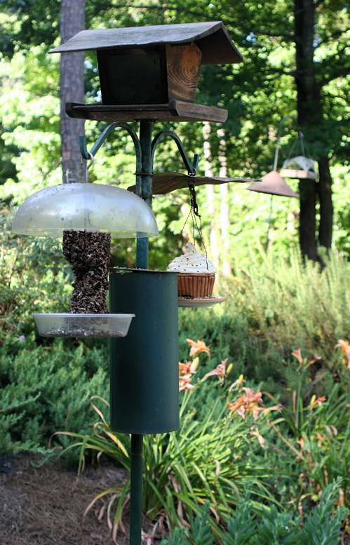 three-arm feeder pole with squirrel baffle