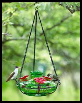 basin style hand blown glass hummingbird feeders