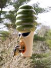 hot lips hilda is one very wild bird feeder