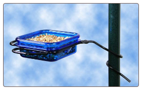 using a dish type mealworm feeder tends to create a free-for-all for wild birds