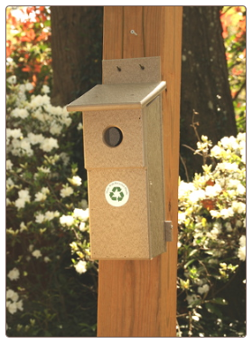 recycled plastic blue bird houses that are NABS Approved