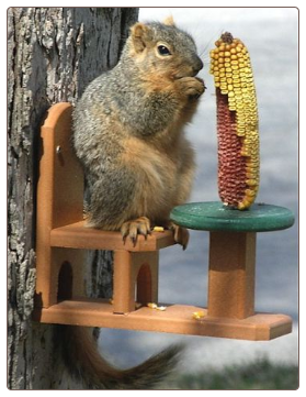 fun table and chair squirrel feeders are now in recycled plastic