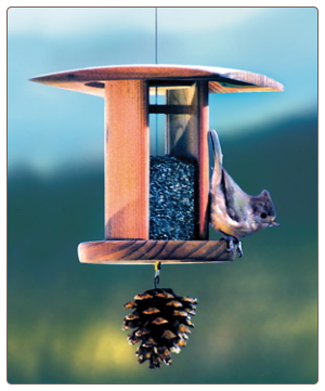 this nyjer feeder has a pinecone attached for adding suet