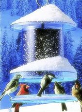 The All Weather Feeder with large capacity, laughs at rain and snow