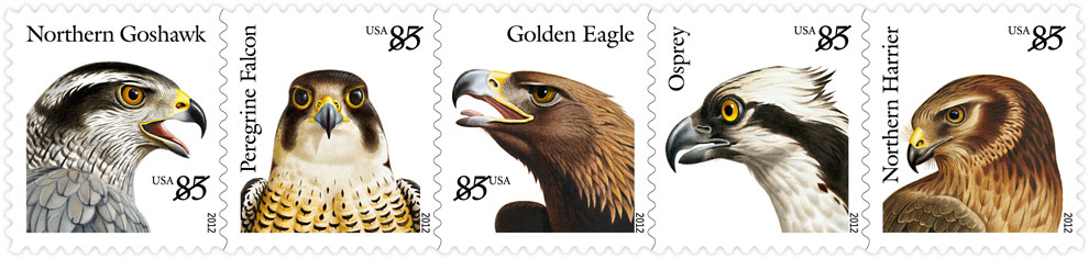 USPS Unveils Birds of Prey Stamps