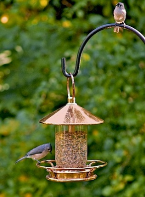 classic perch feeder really isn't a glass bird feeder