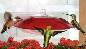 Entice more sprites to your window hummingbird feeder with Pop's Swing and Hummer Helper Nesting Material
