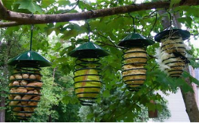 Suet and Fruit Feeders often work well for nesting materials too