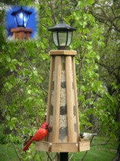 Solar Lighthouse is a pretty cool wild bird feeder that's made in the USA