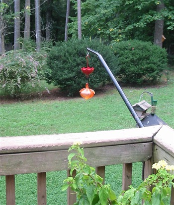 a bird feeder bracket that swivels is more user-friendly