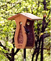 Handcrafted, Curved Screen Peanut Feeder offers all-over feeding space