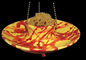 vibrant butterfly feeder with sea sponge is perfect for offering both nectar and fruit.