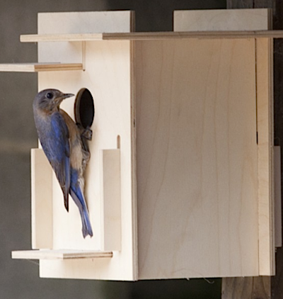 Fun birdhouse kit may be stained or painted