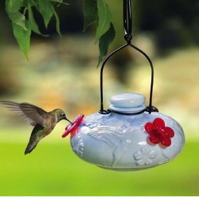 turn any hummingbird feeder into a window feeder with sturdy hangers