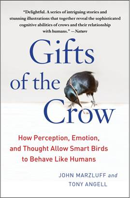 Gifts of the Crow Review