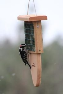 Tail Prop Suet Feeders are perfect wild bird feeders that leave no ground mess.