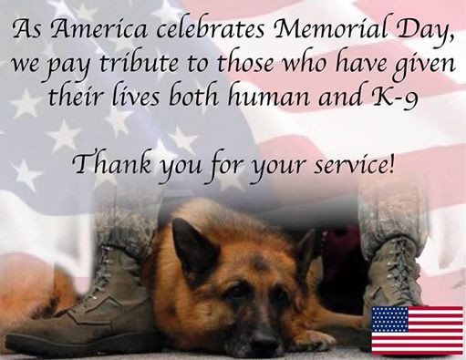 To all the two and four-legged heroes, we pay tribute