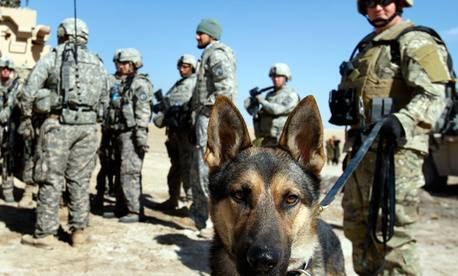 To all unsung herous.... we thank you for serving to protect our freedoms