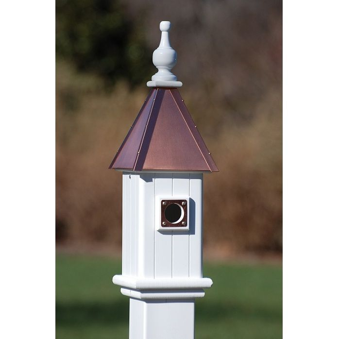 best to see that bluebirds, not house sparrows, are nesting in your bluebird houses