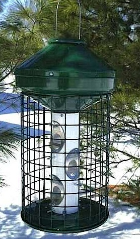 Large Capacity Squirrel Proof Bird Feeder means less refills... keeps squirrels out!