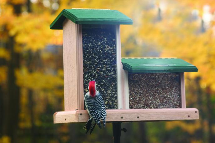 When talking hopper bird feeders - we like the large capacity, double style