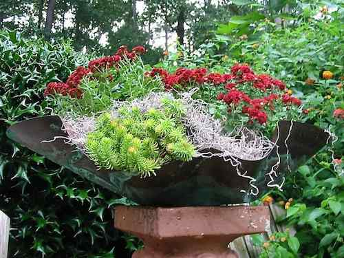 cool design of this piece lends itself to both birdbath & planter