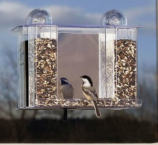 window bird feeders will entice little flyers even up on apartment balconies
