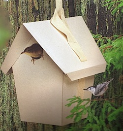 Totally Green Birdhouse Kit is great for birds and your imagination!