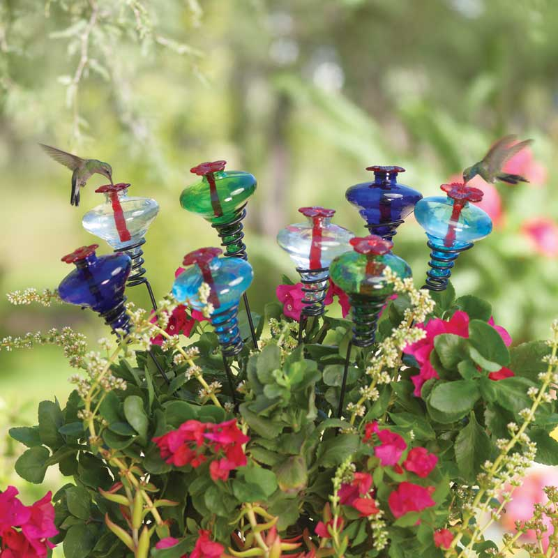 Mini-Blossom Staked Hummingbird feeders