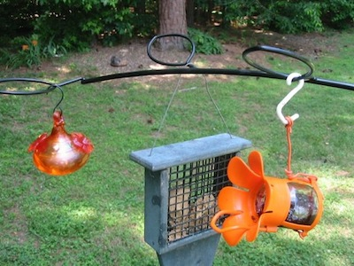 Branch type bird feeder bracket