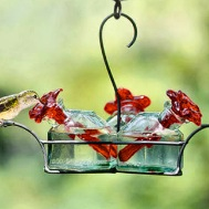 Parasol feeder tubes work great in most Bird Brain Hummingbird Feeders