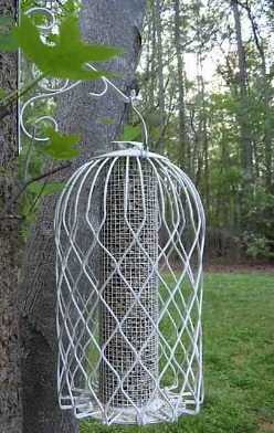 caged squirel proof bird feeder