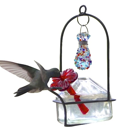 Single Port Glass Hummingbird Feeder by Parasol
