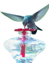 recycled glass hummingbird feeder