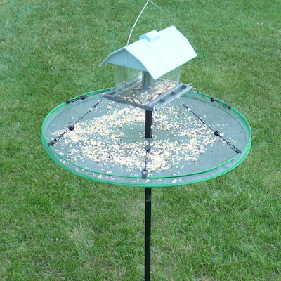 Large birdseed trays may even be pole-mounted