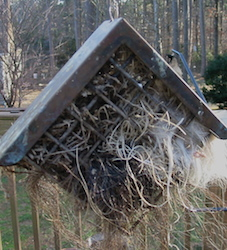 Natural nest materials in suet cage, hang near birdhouses